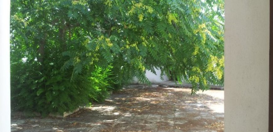 Otranto – Laghi Alimini splendida posizione Casale da ristrutturare