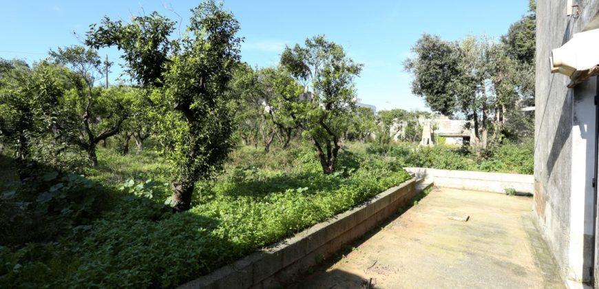 Grecia Salentina Calimera antico tabacchificio con bellissime volte a stella e con ampio giardino